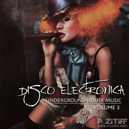 Disco Electronica Vol 3: Underground House Music (2012)