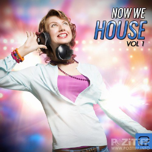 Now We House, Vol. 1
