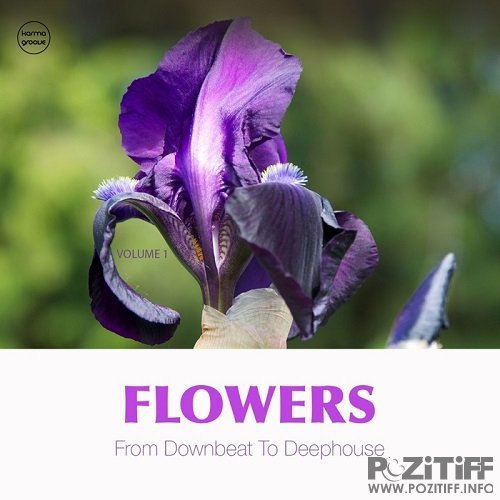 Flowers Vol 1 (From Downbeat To Deep House) (2015)