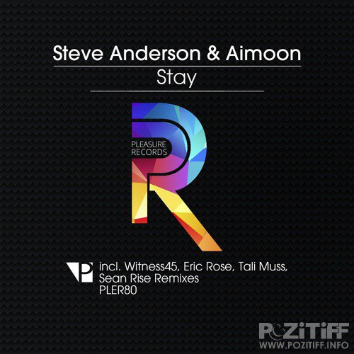 Steve Anderson & Aimoon - Stay (Remixes) (2015)