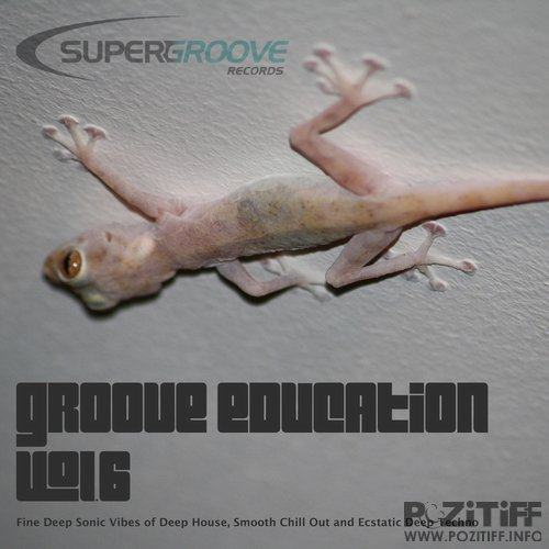 Groove Education, Vol. 6 - Fine Deep Sonic Vibes of Deep House, Smooth Chill Out and Ecstatic Deep Techno (2016)