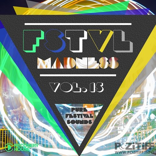 FSTVL Madness Vol 15 (Pure Festival Sounds) (2016)