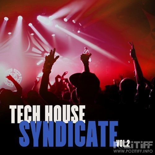 Tech House Syndicate, Vol. 2 (2016)