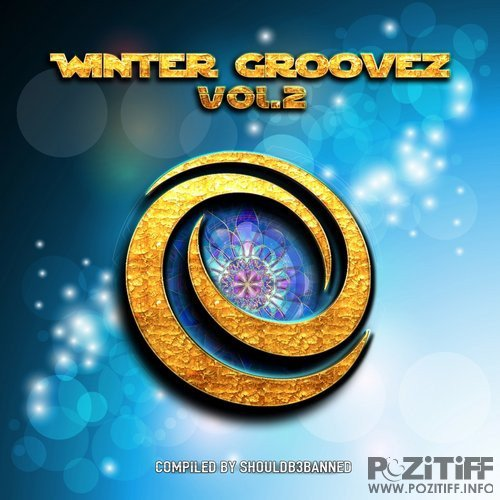 Winter Groovez Vol.2 (Compiled by Shouldb3Banned) (2016)