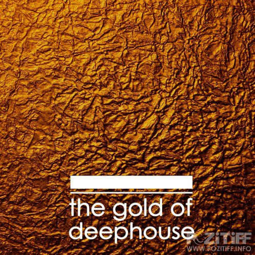 The Gold of Deephouse (2016)