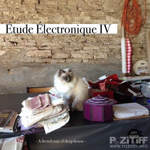 Etude Electronique IV (A French Way Of Deep House) (2016)