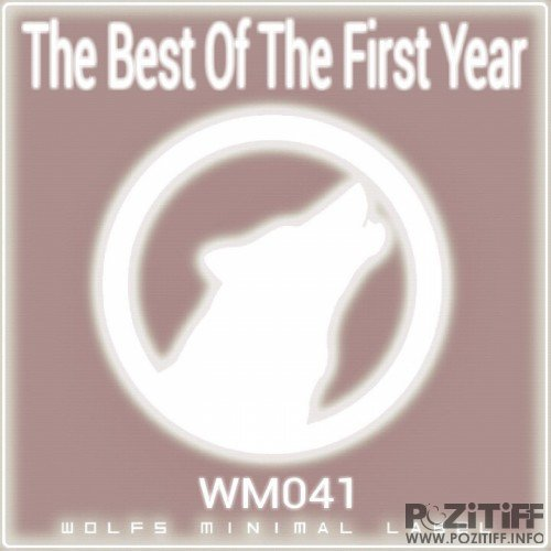 The Best Of The First Year (2016)