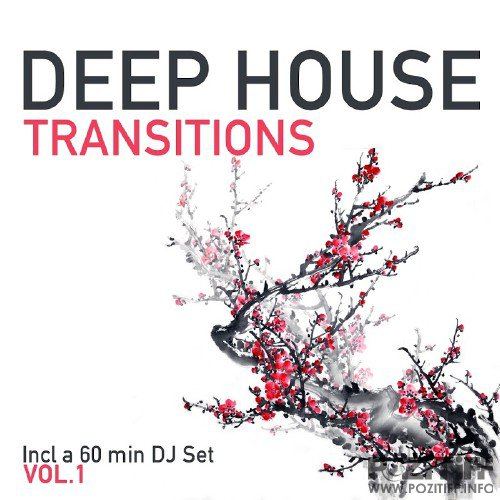 Deep House Transitions, Vol. 1 (2016)