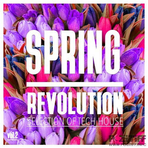 Spring Revolution, Vol. 2 - Selection of Tech House (2016)