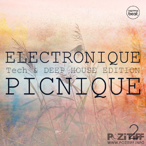 Electronique Picnique, Vol. 2 (Teck And Deep House Edition) (2016)
