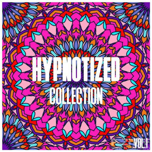 Hypnotized Collection, Vol. 1 - Selection of House Music (2016)