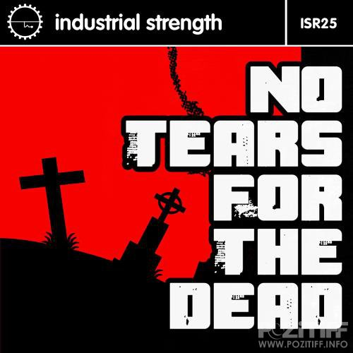 I S R 25 No Tears For The Dead (2017)