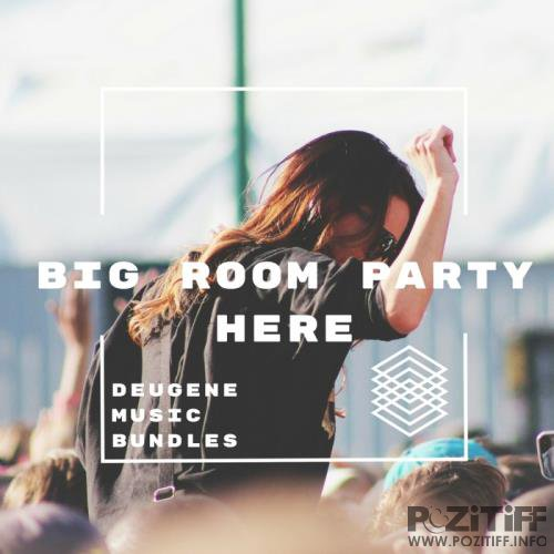 Big Room Party Here (2017)