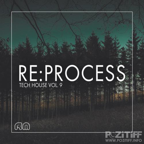 Re:Process - Tech House Vol. 9 (2017)