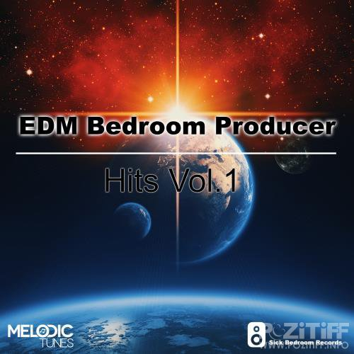 EDM Bedroom Producer Hits, Vol. 1 (2017)