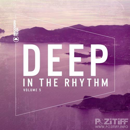 Deep In The Rhythm, Vol. 5 (2017)