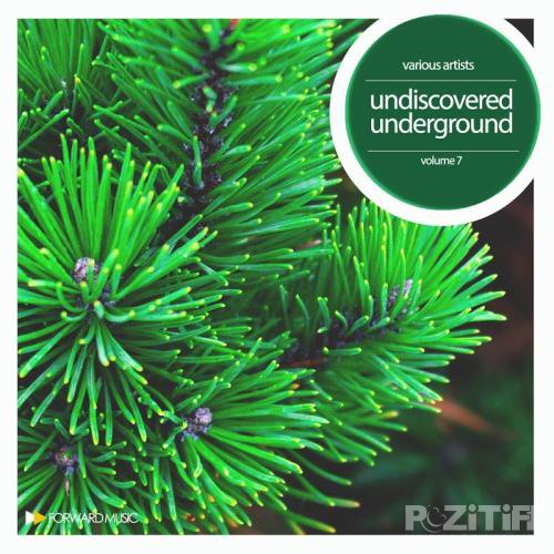 Undiscovered Underground, Vol. 7 (2017)