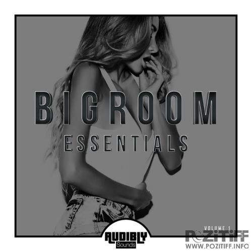 Bigroom Essentials Vol 1 (2017)