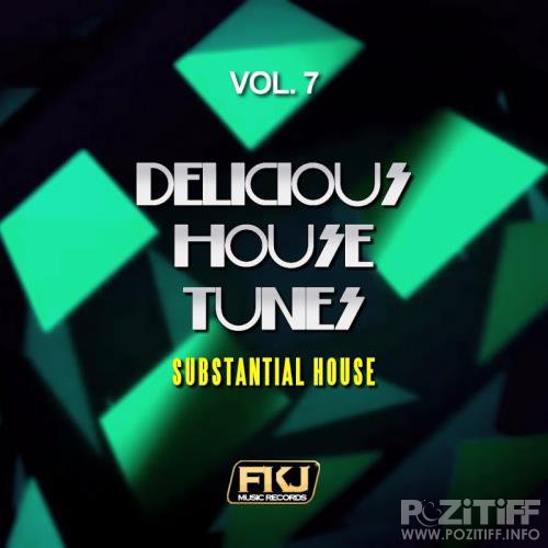 Delicious House Tunes, Vol. 7 (Substantial House) (2017)