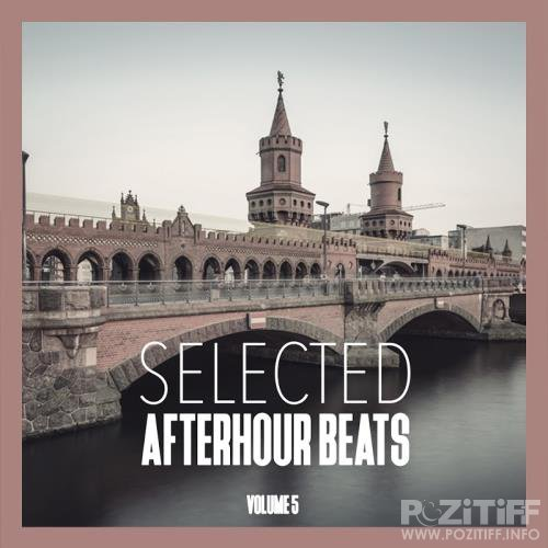 Selected Afterhour Beats, Vol. 5-Best of House and Techno (2017)