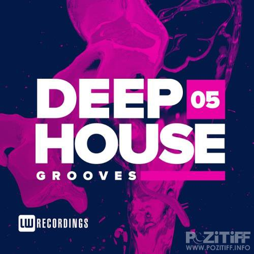 Deep House Grooves, Vol. 05 (2017)