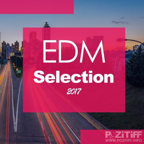 Edm Selection 2017 (2017)
