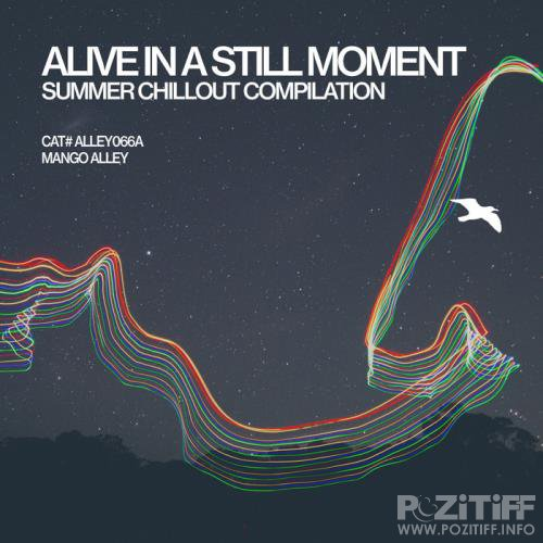 Alive In A Still Moment (2017)