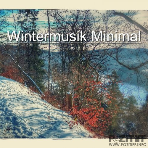 Wintermusik Minimal (Tech House Tracks For Winter) (2017) FLAC