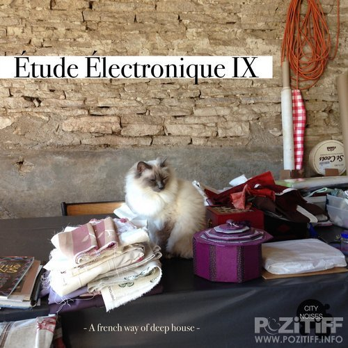 Etude Electronique IX - A French Way of Deep House (2017)