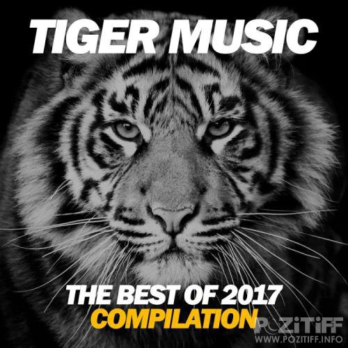 The Best of Tiger Music 2017 (2018)