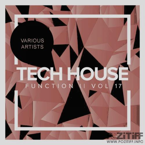 Tech House Function, Vol. 17 (2018)