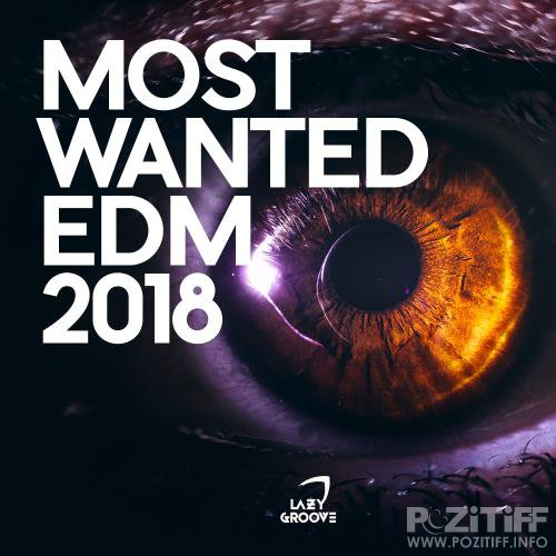 The Best of 2017 (Future House) (2018)