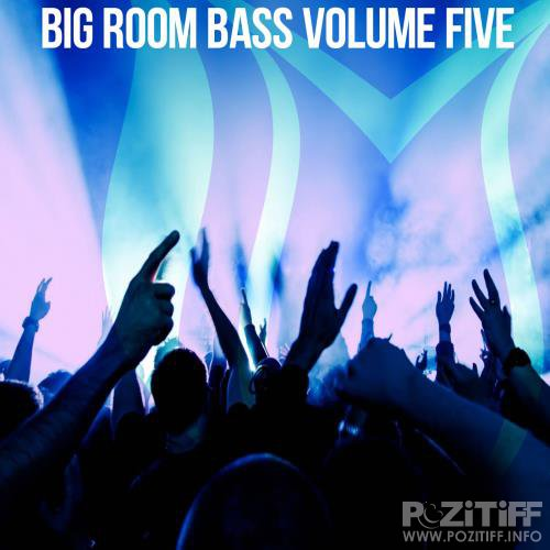 Big Room Bass, Vol. 5 (2018)