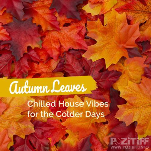 Autumn Leaves: Chilled House Vibes For The Colder Days (2018)