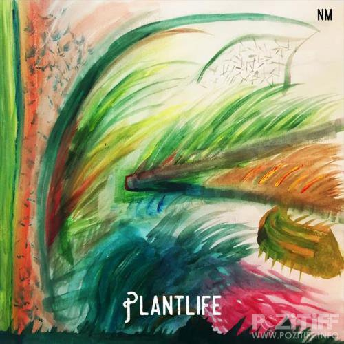 Norman Meadows - Plantlife (2018)