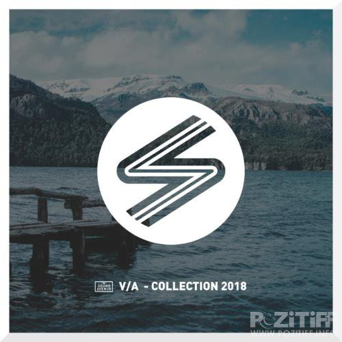 Collection, Vol. 7 (2019)
