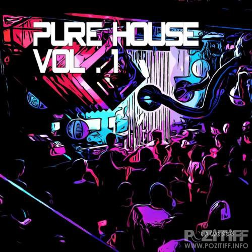 Pure House Vol 1 (Compiled And Mixed By Disco Van) (2019)