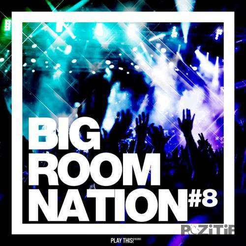 Big Room Nation, Vol. 8 (2019)
