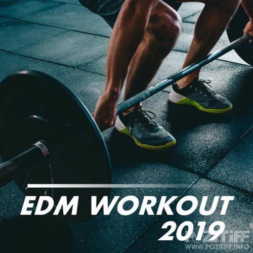 EDM Workout 2019 (2019)