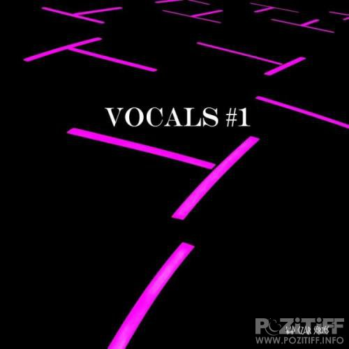 Vocals #1 (Mixed by Disco Van) (2019)