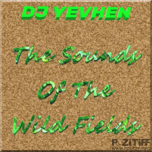 DJ YEVHEN - The Sounds Of The Wild Fields (LP) (2019)