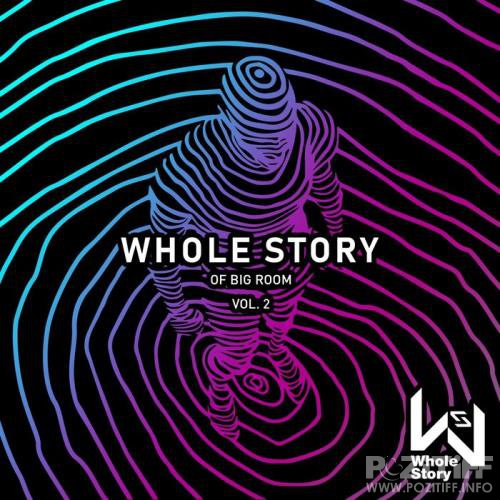 Whole Story Of Big Room Vol. 2 (2019)