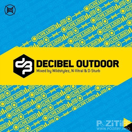 Wildstylez, N-Vitral, D-Sturb - Decibel Outdoor 2019 (2019) FLAC
