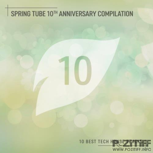 Spring Tube 10th Anniversary Compilation (10 Best Tech House Tracks) (2019)