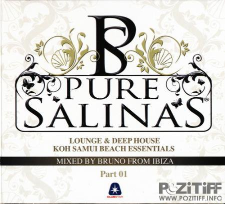 Pure Salinas Collection [14CD] (2020) FLAC