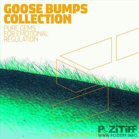 Superordinate Music - Goose Bumps Collection (2020)