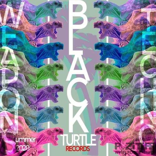 Black Turtle Weapons: Techno Summer 2020 (2020)