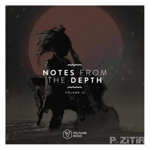 Notes From The Depth, Vol. 12 (2020)