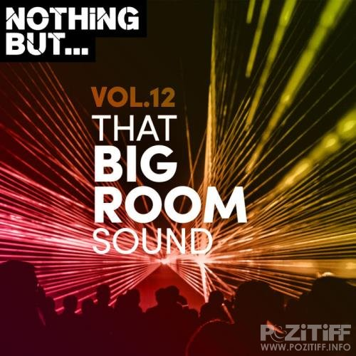 Nothing But... That Big Room Sound Vol 12 (2020)
